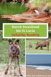Bericht über Swaziland und St.Lucia