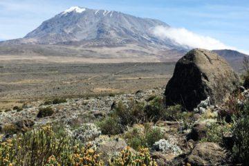 Kilimandscharo
