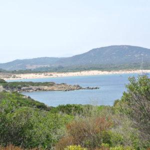 Spaziergang auf Isola dei Gabbiani
