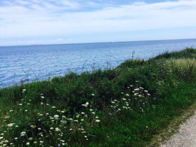 Fahrradtour_Ostseeküstenradweg_MSWellTravel (60)