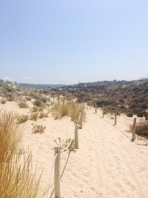 Strand auf Isola dei Gabbiani