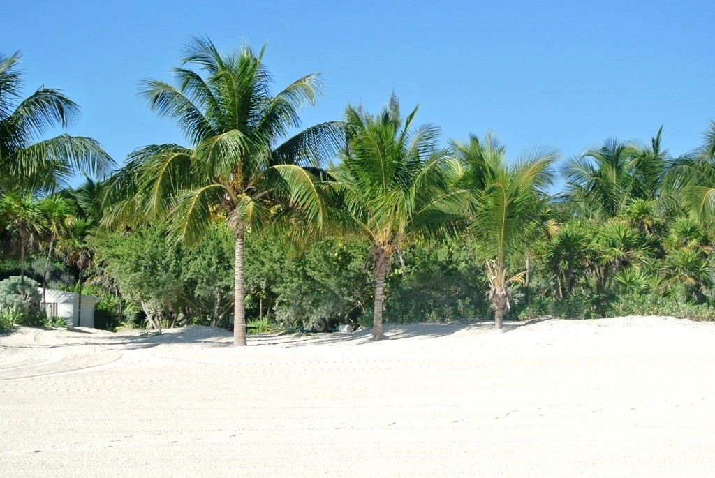 MSWellTravel_Hotel_Yucatan_RivieraMaya2