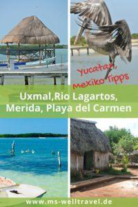 MSWellTravel_Yucatan_Rundreise Teil 2