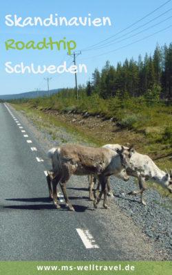 MSWellTravel_Skandinavien_Roadtrip_Elche