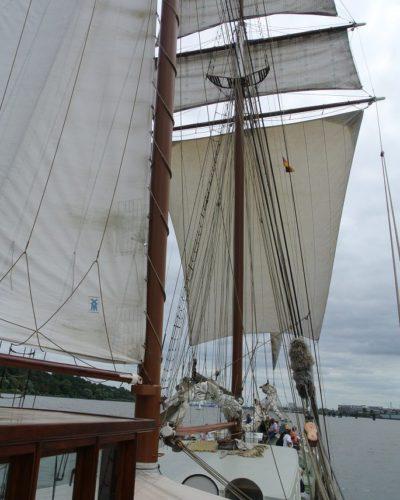 Segeltörn entlang der Elbe - Segel gesetzt