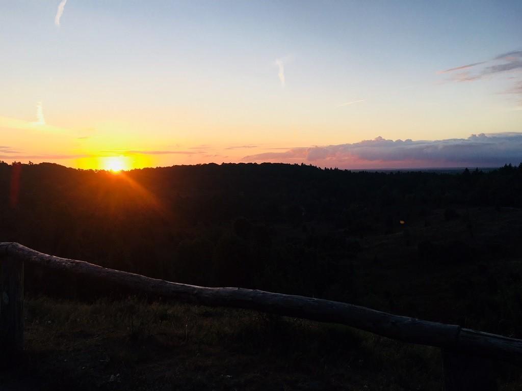 Sonne erwacht in der Heide