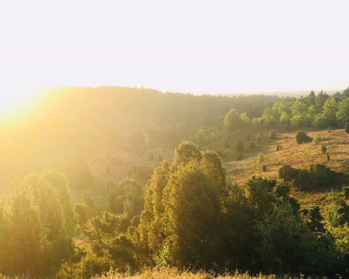 Sonnenaufgang Lüneburger Heide - Ort Totengrund