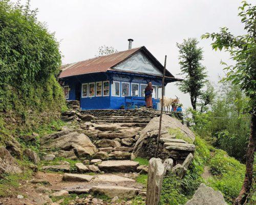 Tea Houses für Übernachtungen