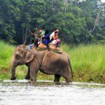 Elefantenreiten