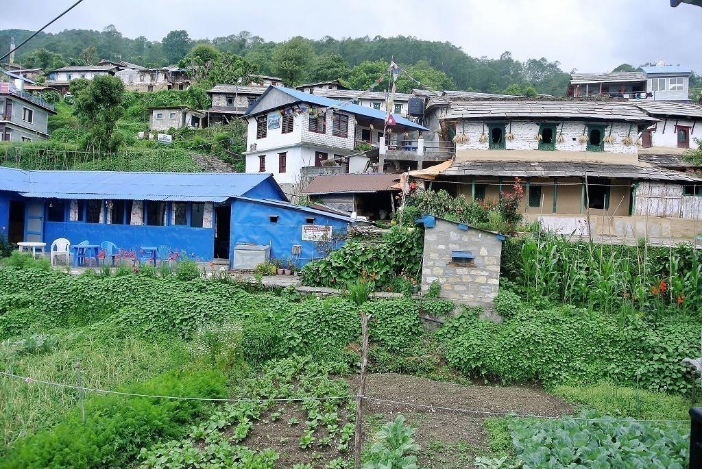 Ausblick auf Häuser