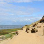 Sanddünen Morsum Kliff