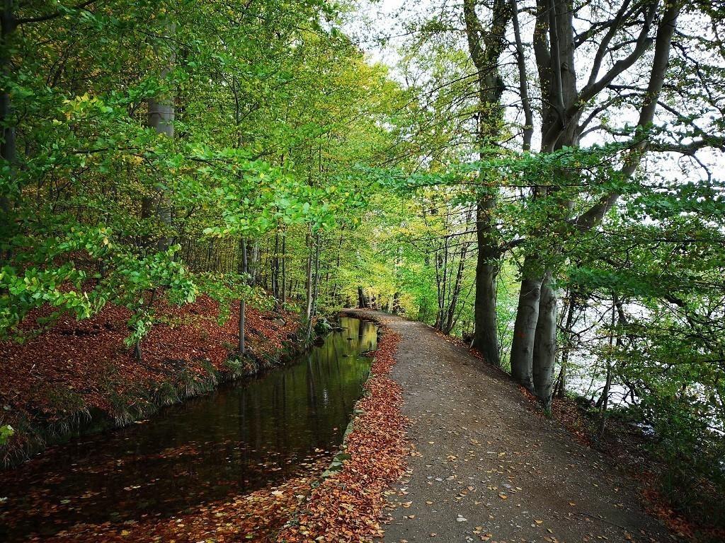 Malente Tipps: Wanderweg