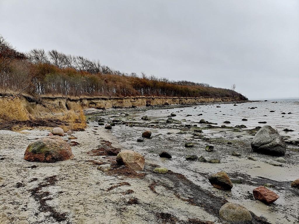 Steilküste und Ebbe an der Ostsee