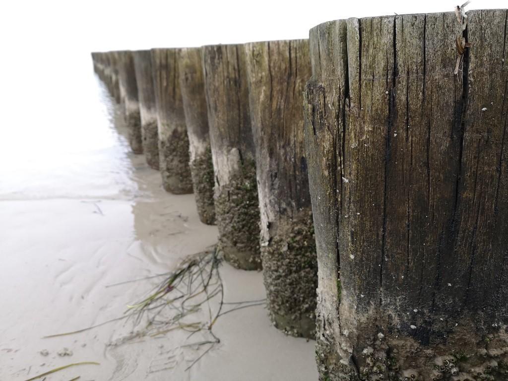 Entdeckungsreise an der Ostsee