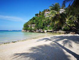 Strand, Meer und Palmen