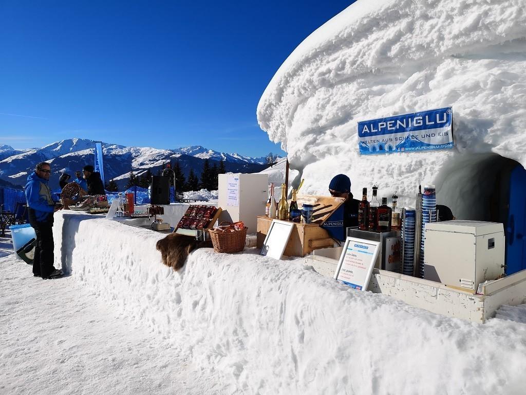 Eisbar Alpeniglu