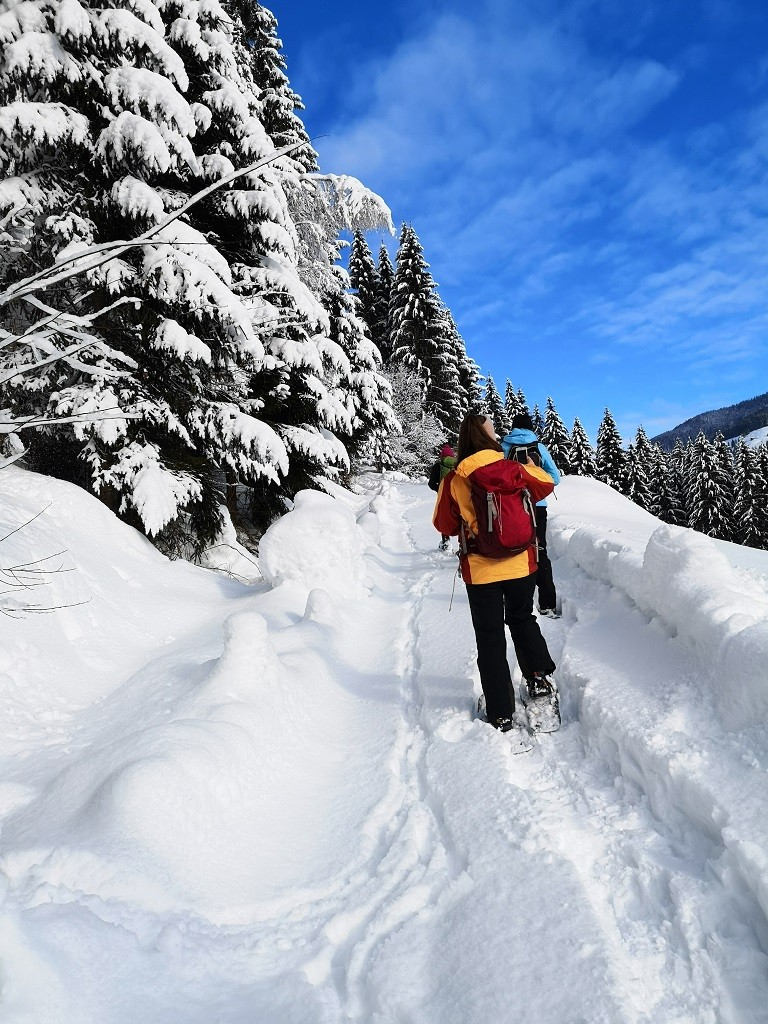 Schneeschuhwanderung in Kelchsau