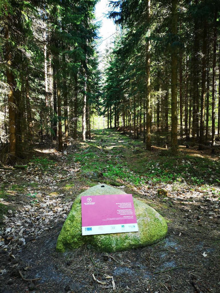 Poesiepfad im Wald