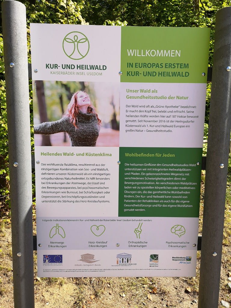 Kur- und Heilwald in Heringsdorf