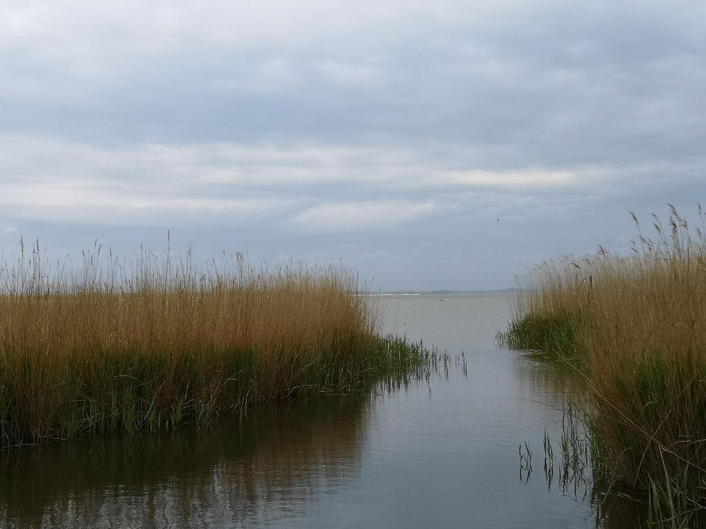 Ausblick auf das Achterwasser
