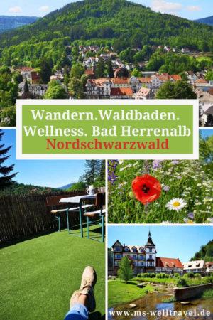 Ausflugsziel Schwarzwald: Wanderung, Waldbaden und Selfness bzw. Wellness in Bad Herrenalb