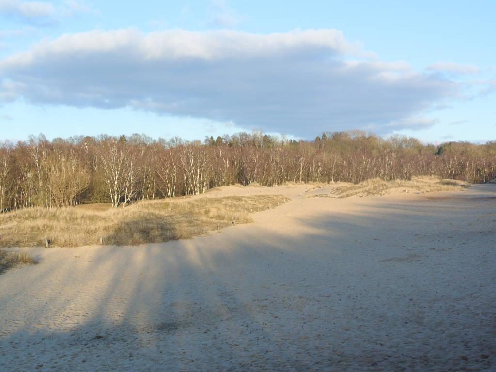 Wanderung in den Boberger Dünen