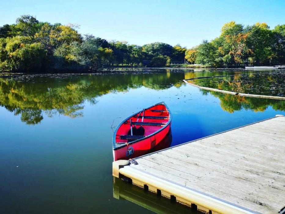 Perfektes Ausflugsziel für Groß und Klein ist der Wilhelmsburger Inselpark
