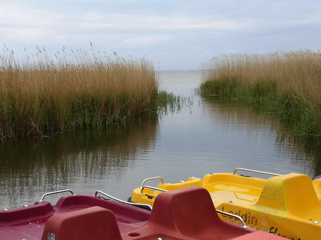 Tretboote auf dem Achterwasser