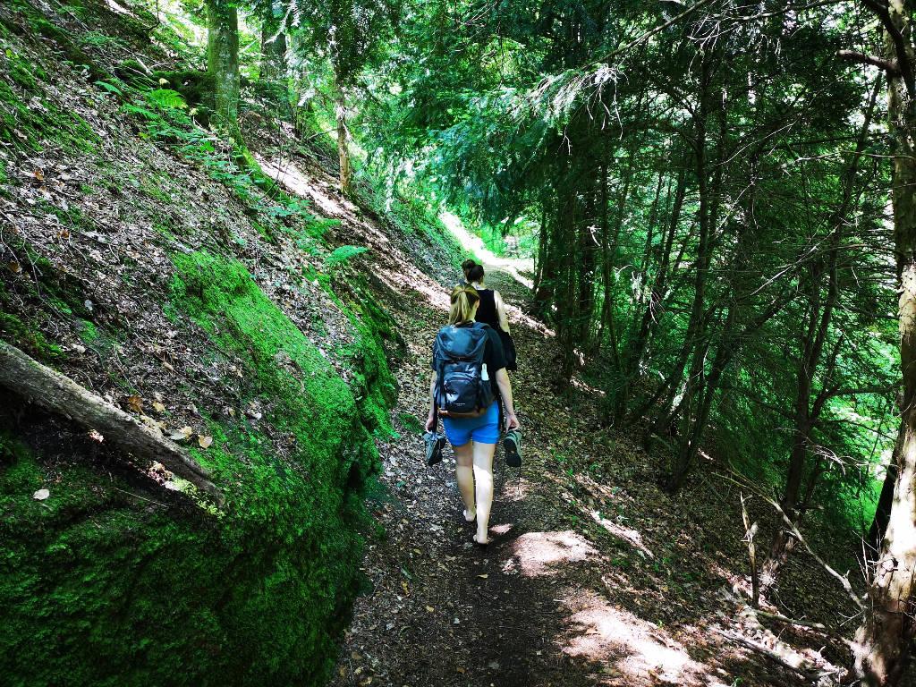 Barfuss durch den Wald