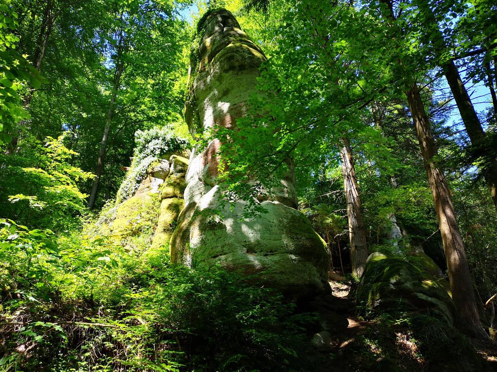 WOW - den Falkenstein-Felsen ganz nah