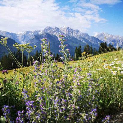Wandern in der Schweiz: Via Engiadina
