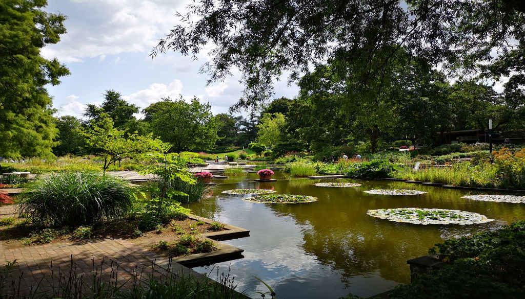 Ein Stadtpark in Hamburg