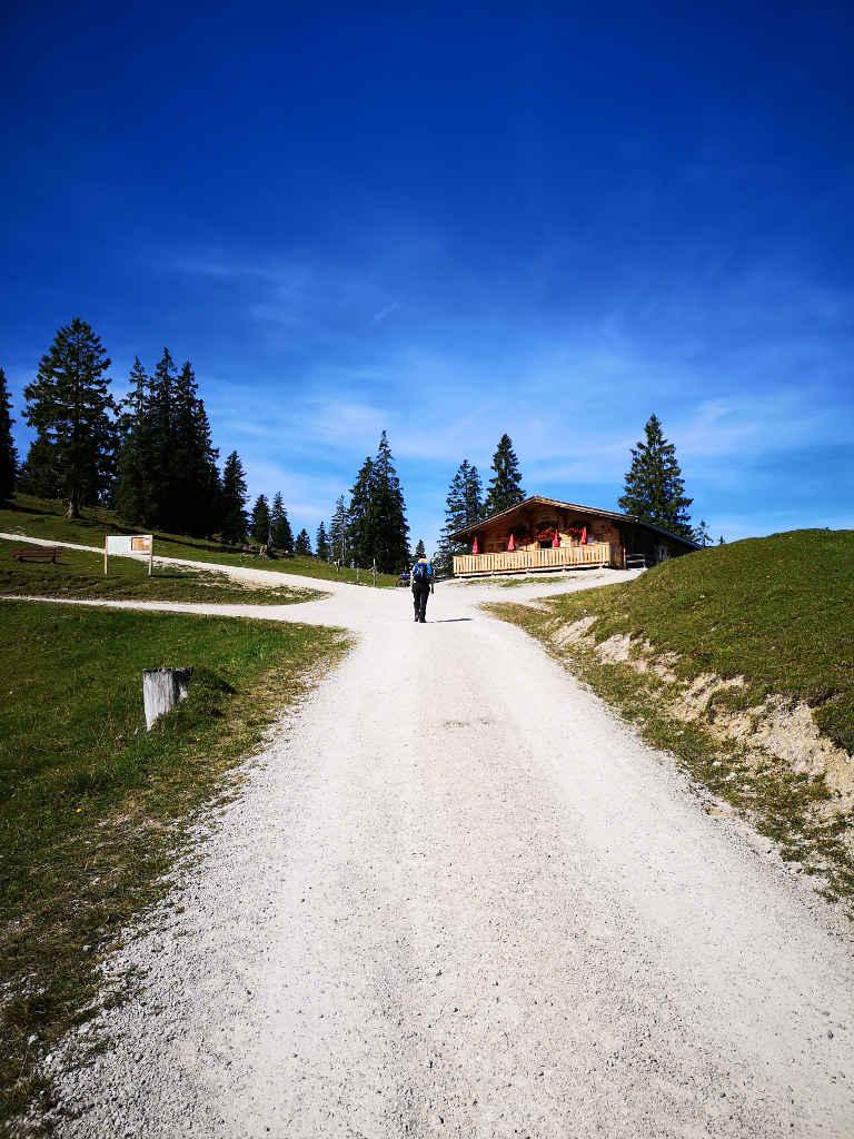 Forstweg zur Anderl's Hütte