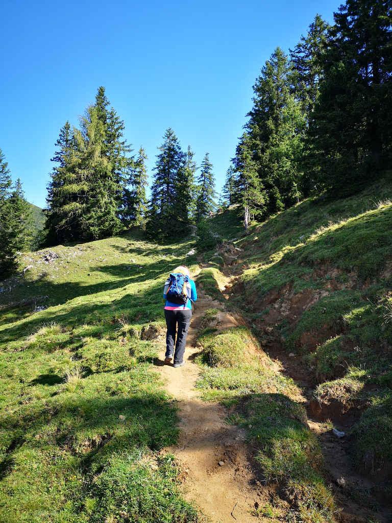 Tipp: Offline & Online Routenmaterial für die Wandertour