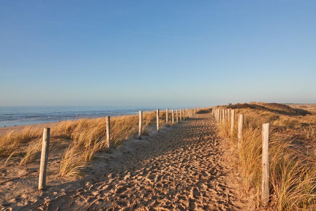 Natur pur in Egmond aan Zee ©Bitte Richtung Meer