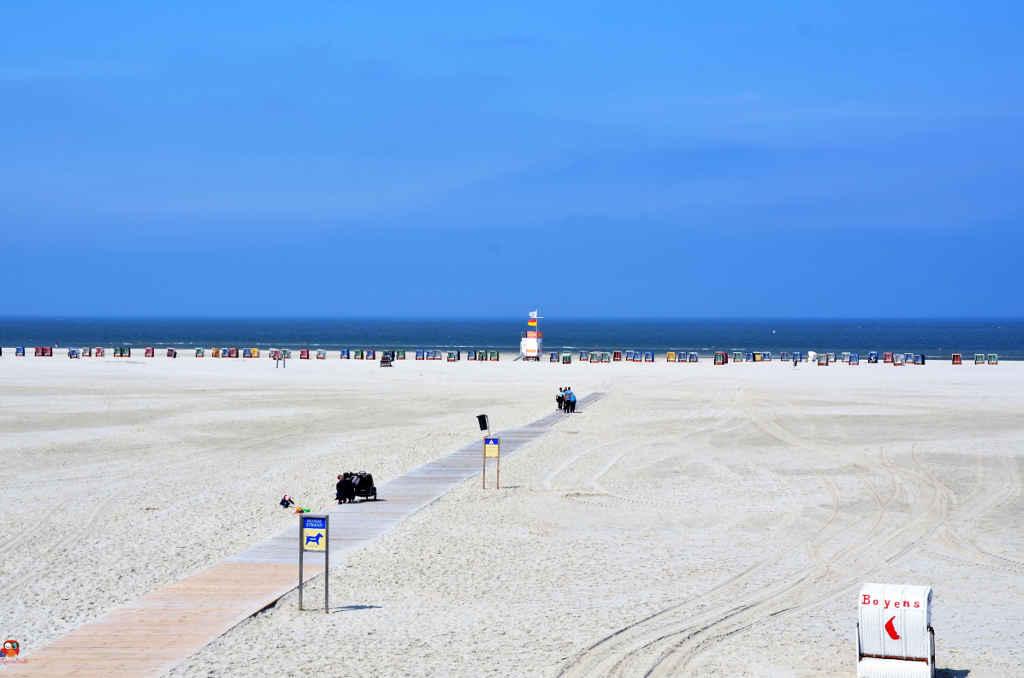 Urlaubstipp: Amrum Strandspaziergang ©DieRieseEule