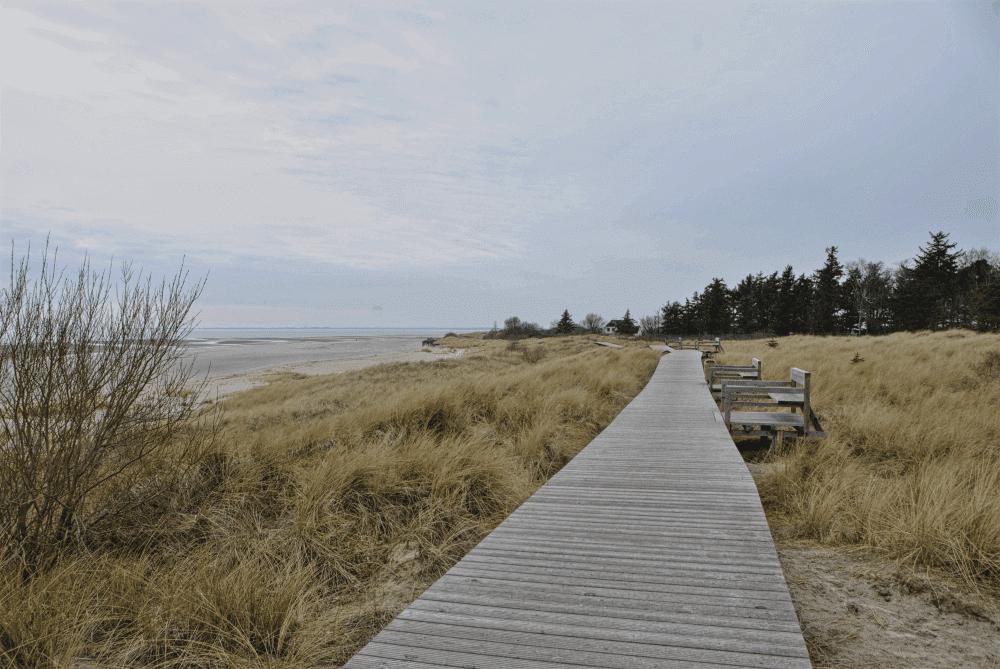 Wochenende auf der Insel Föhr ©RiaonTour