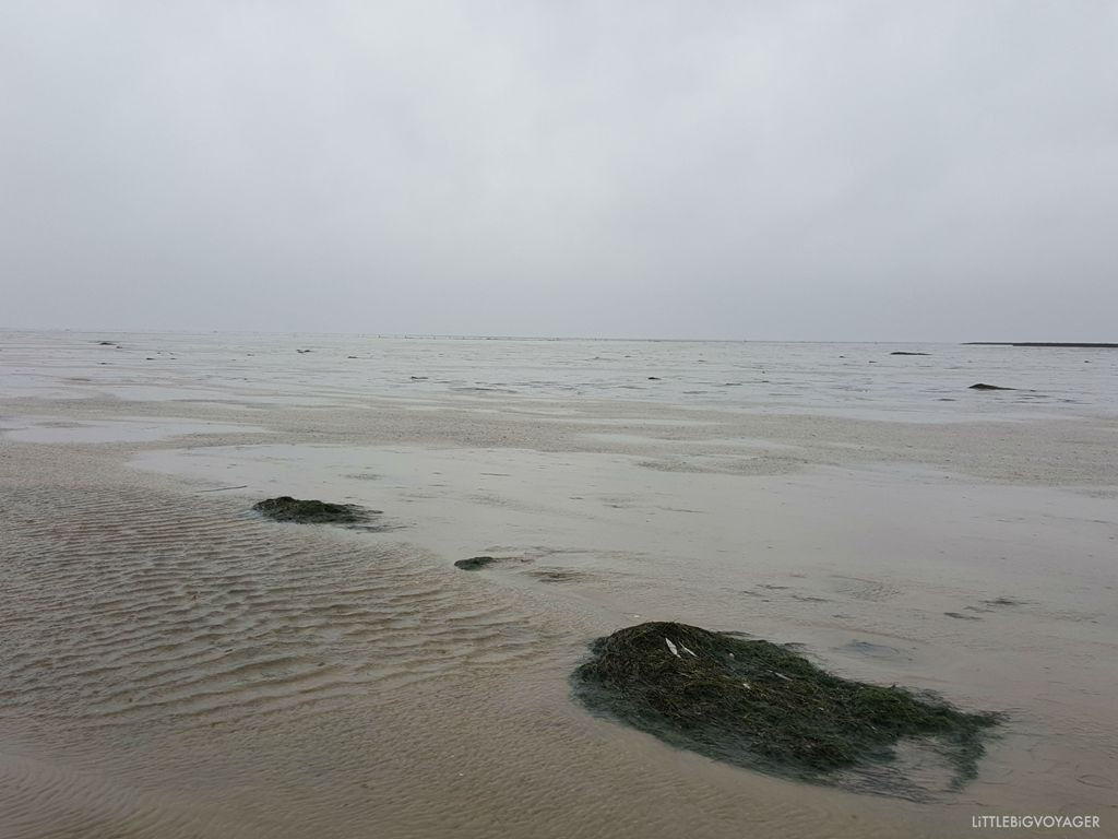 Kurzurlaub Nordsee bei Nordstrand im Regen ©littlebigvoyager