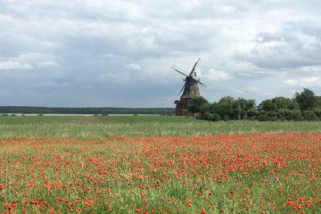 Radtour Norddeutschland im Grünen