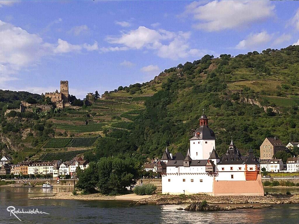Burg Pfalzgrafenstein auf der Insel Falkenau ©Radelmädchen