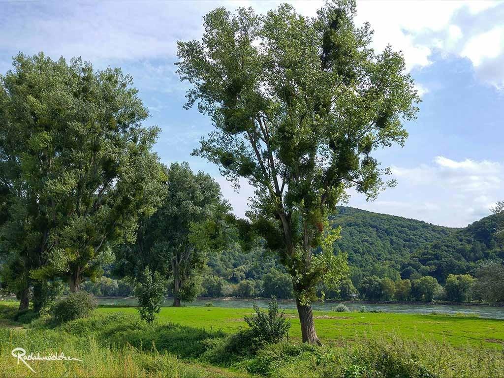 Auch auf der Radtour: idyllische Landschaft, die zum Verweilen einlädt ©Radelmädchen