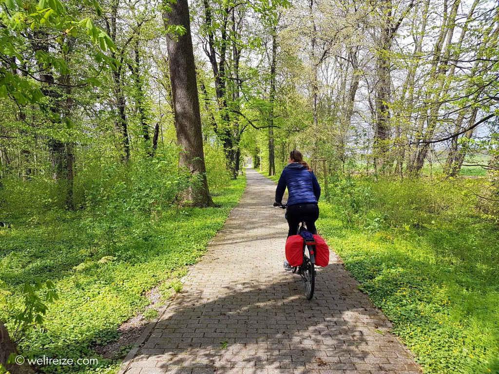 Claudia unterwegs von Torgau nach Wittenberg ©Weltreize