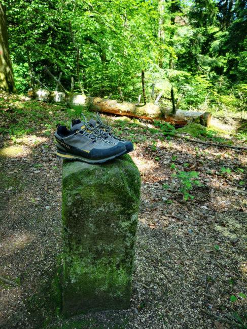 Waldbaden ohne Schuhe - Barfußlaufen ist gesund