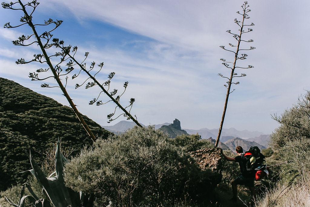 Gran Canarias Nordseite ©Outdoornomaden