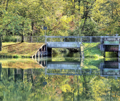 Radtour Schwarzwald Breisgau Altarm des Rheins