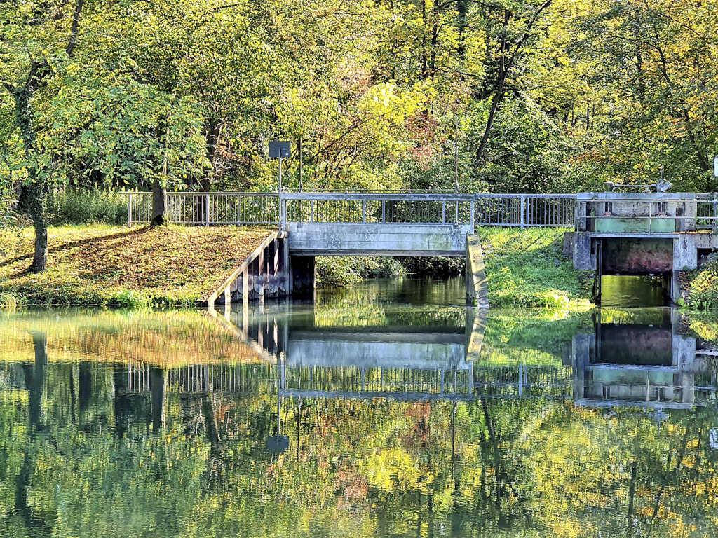 Die schönsten Radtouren in Deutschland: Breisgau im Schwarzwald – Rheinidylle & Kaiserstuhl