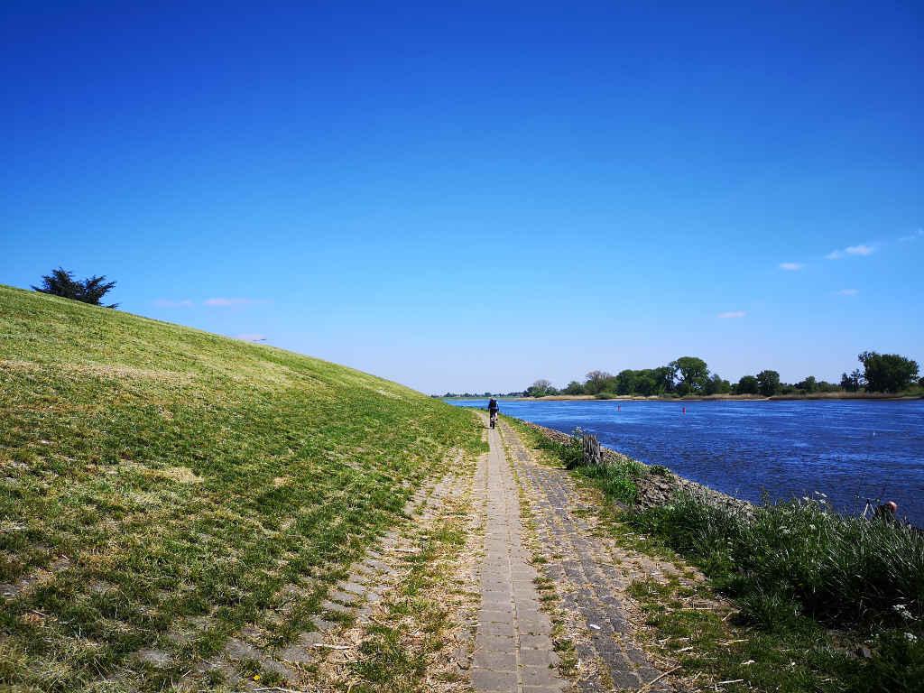 Rad- und Wanderweg an der Elbe