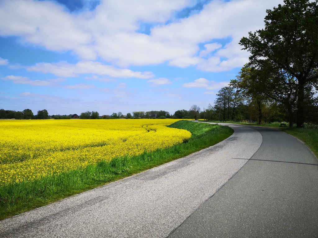 Überwiegend asphaltierte Straßen bis zur Elbe