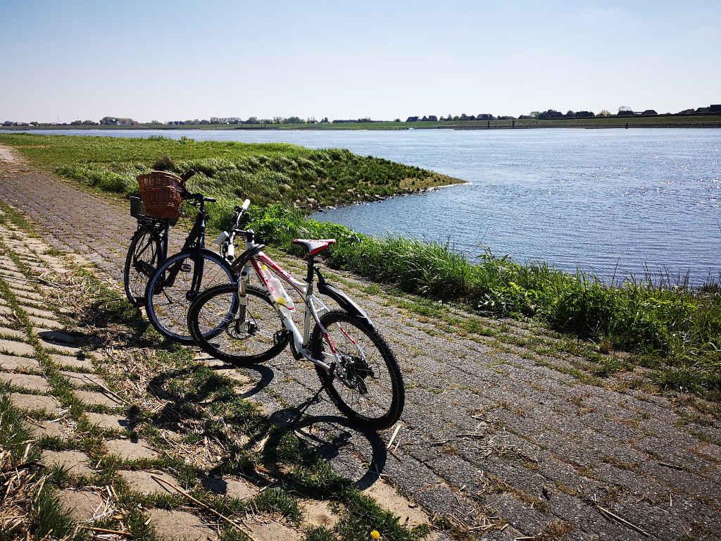 Radtour entlang der Elbe