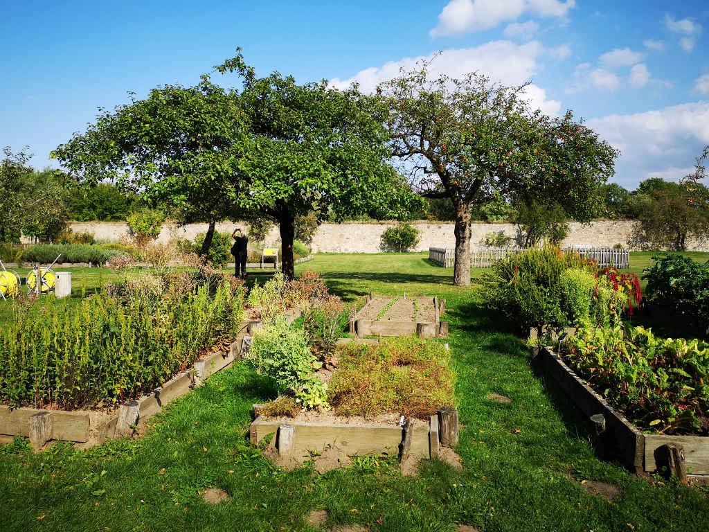 Obst-, Gemüse- & Kräutergarten